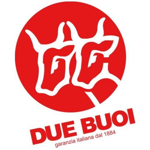 DUE BUOI